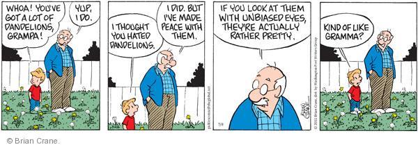 Comic Strip Brian Crane  Pickles 2011-07-08 grandmother
