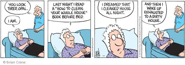 Comic Strip Brian Crane  Pickles 2011-07-09 bedtime