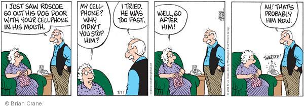 Comic Strip Brian Crane  Pickles 2011-07-11 too