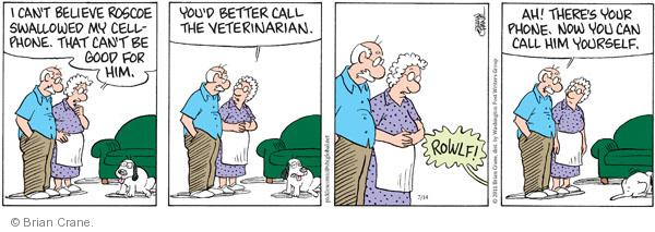 Comic Strip Brian Crane  Pickles 2011-07-14 veterinarian