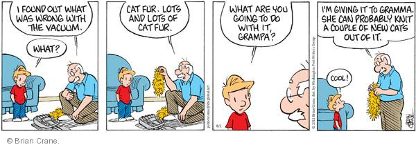 Comic Strip Brian Crane  Pickles 2011-08-01 grandmother