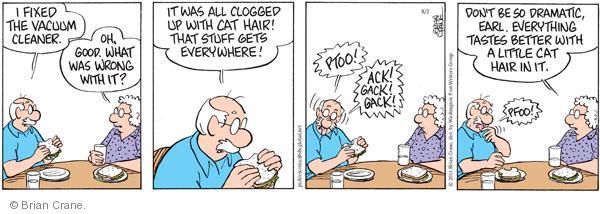 Comic Strip Brian Crane  Pickles 2011-08-02 everywhere