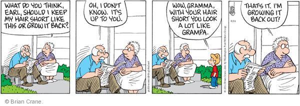 Comic Strip Brian Crane  Pickles 2011-08-11 hairstyle