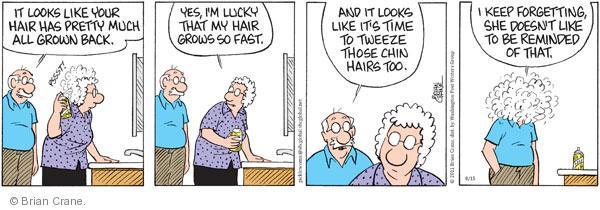 Comic Strip Brian Crane  Pickles 2011-08-15 hairstyle