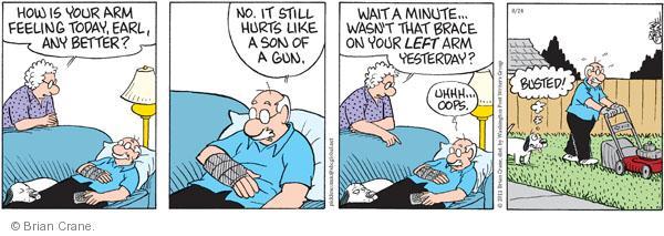 Comic Strip Brian Crane  Pickles 2011-08-24 arms