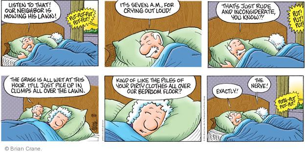 Comic Strip Brian Crane  Pickles 2011-08-28 bedroom