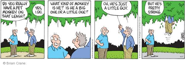 Comic Strip Brian Crane  Pickles 2011-09-17 guy