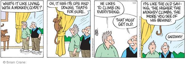 Comic Strip Brian Crane  Pickles 2011-09-20 bad