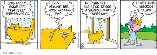 Comic Strip Brian Crane  Pickles 2011-09-28 cat carrier