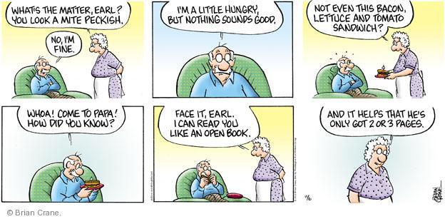 Comic Strip Brian Crane  Pickles 2011-11-06 discern