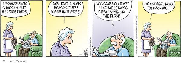 Comic Strip Brian Crane  Pickles 2011-11-08 housekeeping