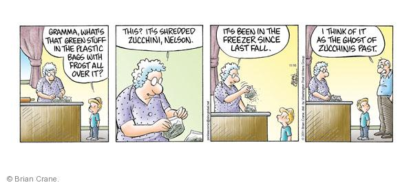 Comic Strip Brian Crane  Pickles 2011-11-16 freeze