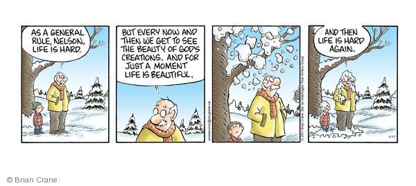 Comic Strip Brian Crane  Pickles 2011-11-17 pile