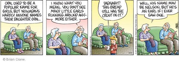 Comic Strip Brian Crane  Pickles 2011-11-30 nowadays