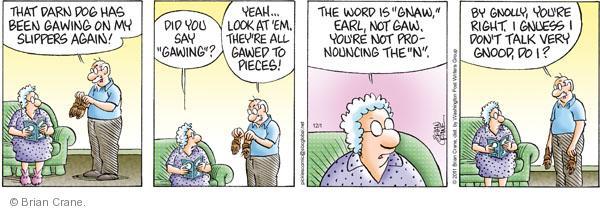 Comic Strip Brian Crane  Pickles 2011-12-01 silent