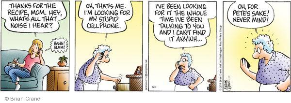 Comic Strip Brian Crane  Pickles 2011-12-05 memory