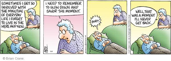 Comic Strip Brian Crane  Pickles 2011-12-06 interruption
