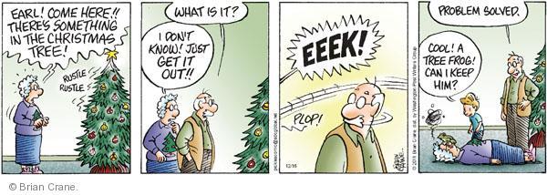 Comic Strip Brian Crane  Pickles 2011-12-16 solution