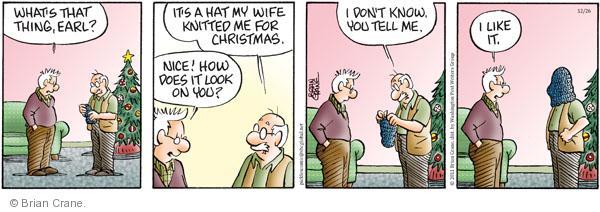 Comic Strip Brian Crane  Pickles 2011-12-26 Christmas gift