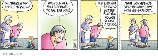Comic Strip Brian Crane  Pickles 2011-12-29 too