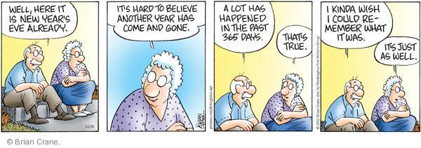 Comic Strip Brian Crane  Pickles 2011-12-31 memory