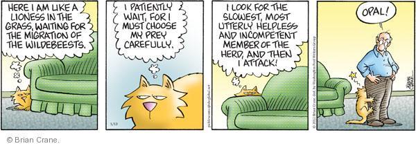Comic Strip Brian Crane  Pickles 2012-01-13 lion