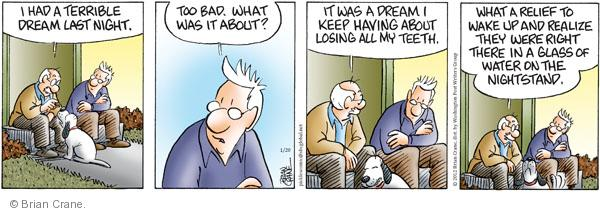 Comic Strip Brian Crane  Pickles 2012-01-20 lose