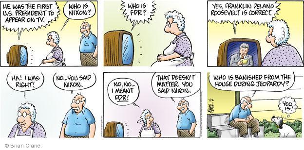 Comic Strip Brian Crane  Pickles 2012-01-22 husband