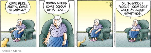 Comic Strip Brian Crane  Pickles 2012-01-24 kitty