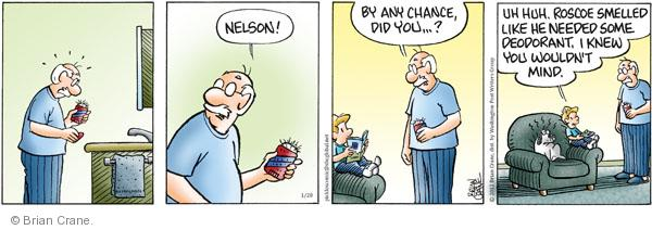 Comic Strip Brian Crane  Pickles 2012-01-28 Nelson