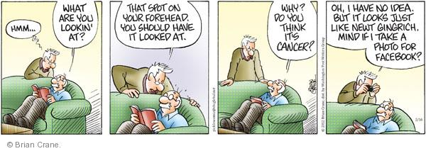 Comic Strip Brian Crane  Pickles 2012-02-16 Newt Gingrich