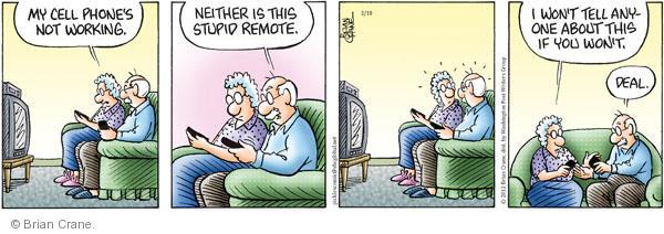Comic Strip Brian Crane  Pickles 2012-02-18 senior health
