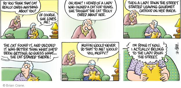 Comic Strip Brian Crane  Pickles 2012-03-04 owner