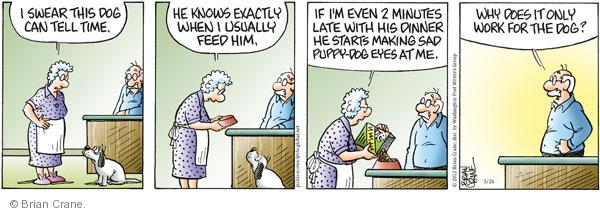 Comic Strip Brian Crane  Pickles 2012-03-26 relationship