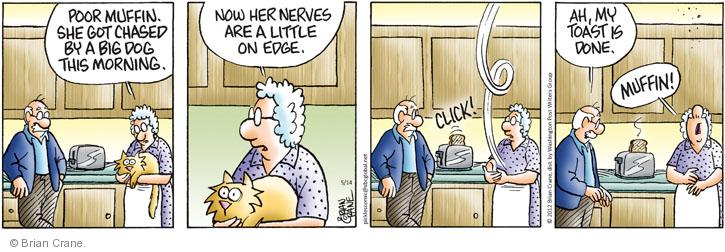 Comic Strip Brian Crane  Pickles 2012-05-14 on my nerves