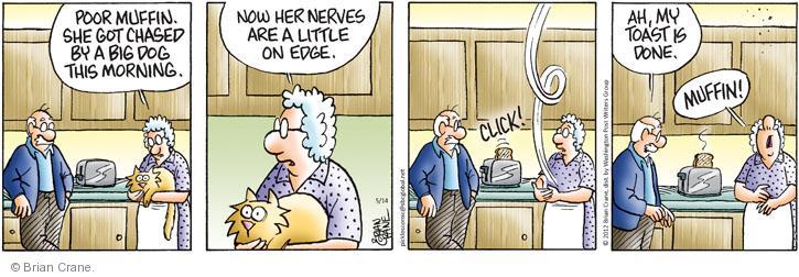 Comic Strip Brian Crane  Pickles 2012-05-14 chasing cat