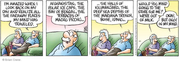Comic Strip Brian Crane  Pickles 2012-06-06 Afghanistan