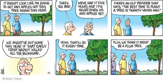 Comic Strip Brian Crane  Pickles 2012-06-10 get old