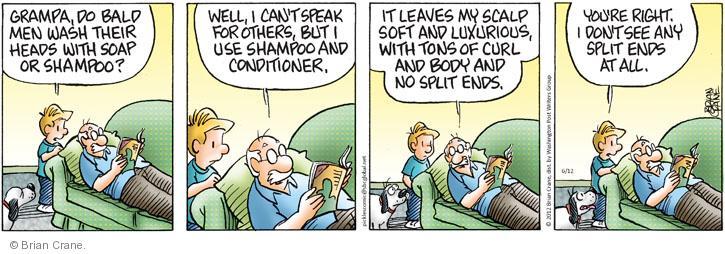 Comic Strip Brian Crane  Pickles 2012-06-12 shampoo