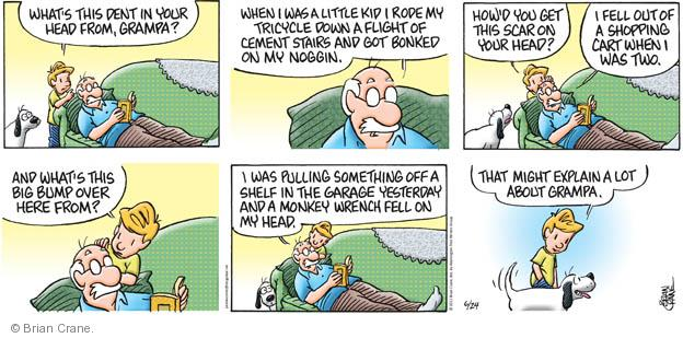 Comic Strip Brian Crane  Pickles 2012-06-24 concussion