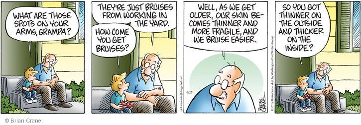 Comic Strip Brian Crane  Pickles 2012-06-25 arms