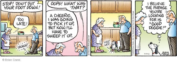 Cartoonist Brian Crane  Pickles 2012-07-17 cheerio