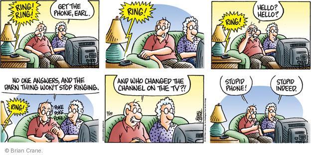 Comic Strip Brian Crane  Pickles 2012-07-29 age