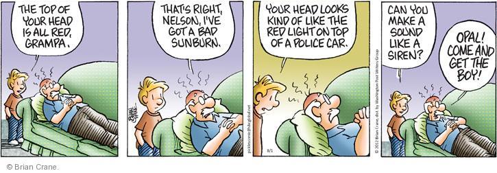 Comic Strip Brian Crane  Pickles 2012-08-01 bad boy