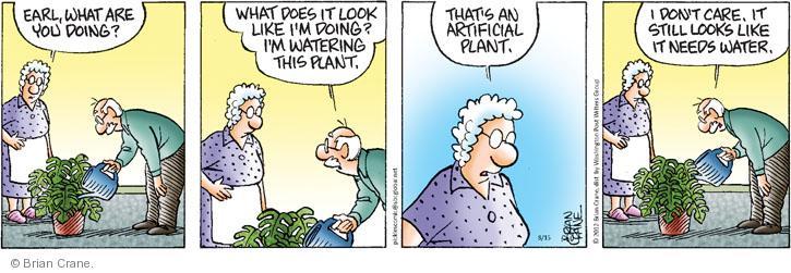 Comic Strip Brian Crane  Pickles 2012-08-15 watering plant