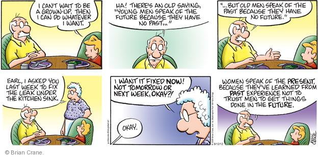 Comic Strip Brian Crane  Pickles 2012-08-12 get old