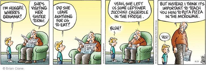 Comic Strip Brian Crane  Pickles 2012-08-29 microwave