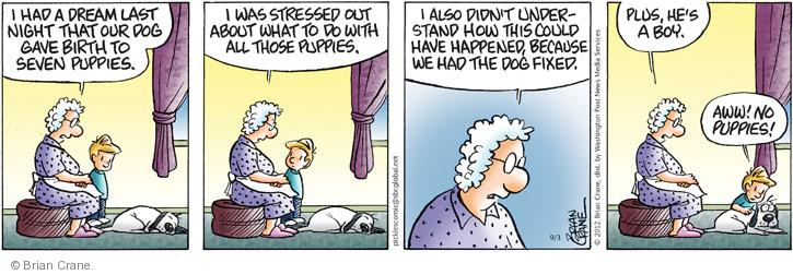 Comic Strip Brian Crane  Pickles 2012-09-03 puppy
