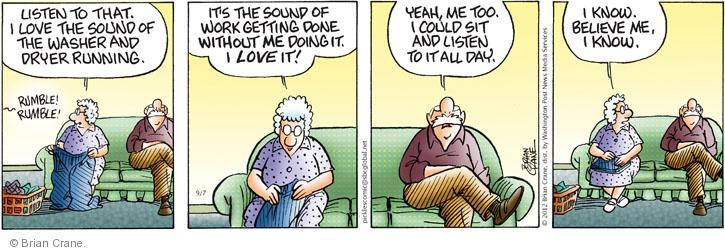 Comic Strip Brian Crane  Pickles 2012-09-07 husband