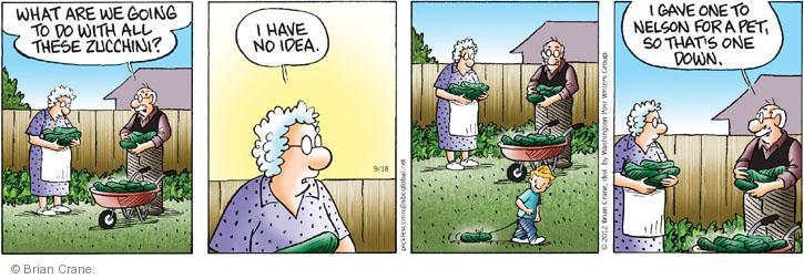 Comic Strip Brian Crane  Pickles 2012-09-18 zucchini